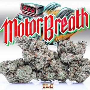 Buy motor Breath weed online