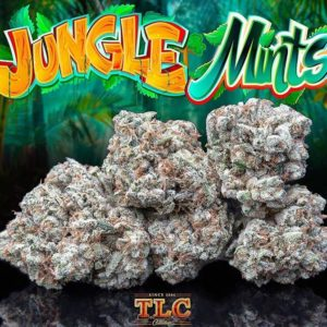 Buy Jungle Mints weed Online