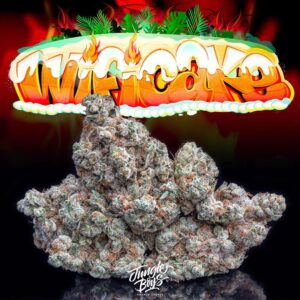 Buy Jungle Boys Wifi Cake weed Online