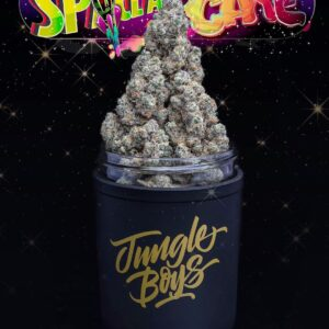 Buy Jungle Boys Space Age Cake weed Online