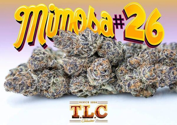 Buy jungle boys mimosa # 26 weed online