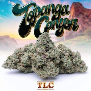 Buy jungle boys Topanga Canyon weed online