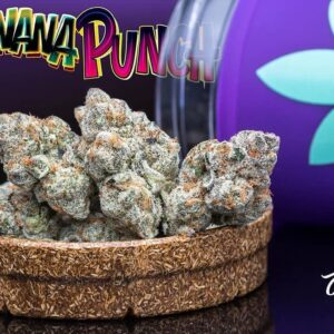 Buy jungle boys Banana Punch weed online