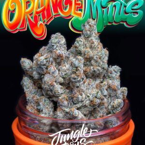 Buy orange mints weed online