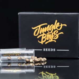 Buy jungle boys weed seeds online